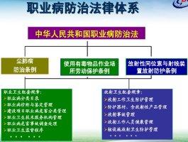 职业健康及个体防护培训讲义